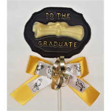 Plaque w/Diploma Lolly